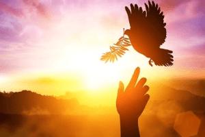 Oración al Espíritu Santo Pidiendo Sabiduría e Entendimiento