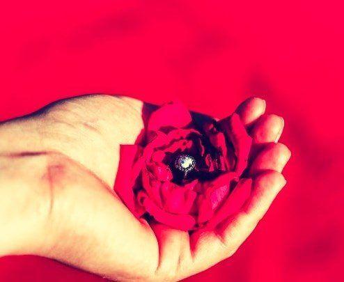 Baño de Rosas Rojas para Atraer el Amor y la Amistad